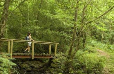 Camping en Asturias | sendas